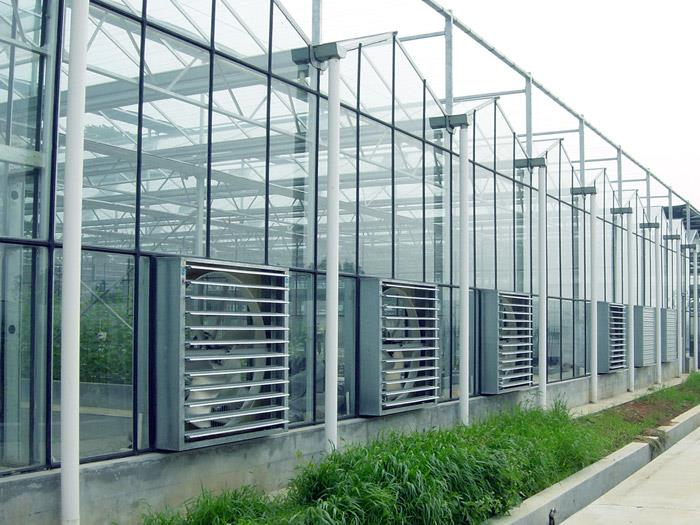 Notes on the construction of glass continuous greenhouse ...