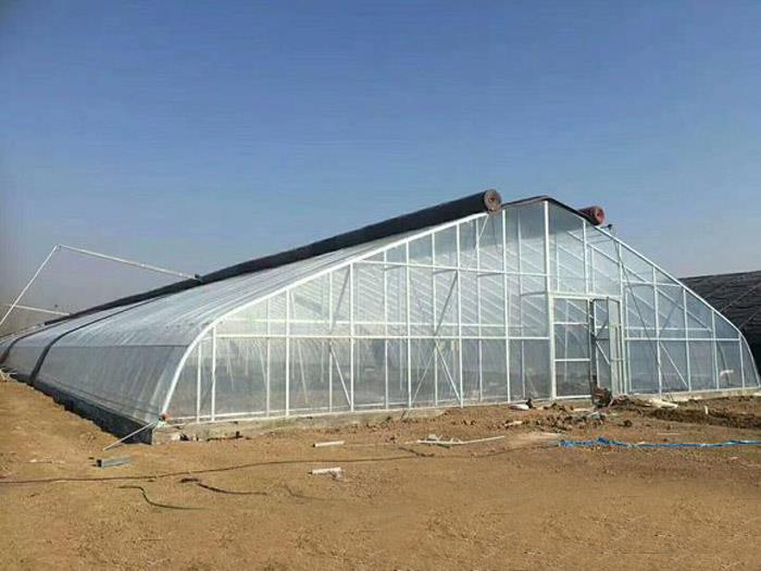 The cost of new greenhouse shed