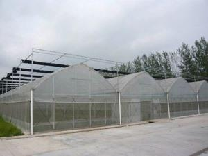Thin film connected Greenhouse